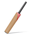bat for cricket vector image