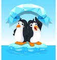 Cute penguins standing on ice vector image vector image