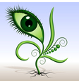 plant-eye vector image vector image