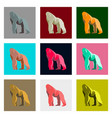 set of in flat style gorilla vector image