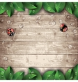 Ladybugs and leaves on wooden texture background vector image
