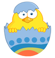 Yellow Easter Chick In A Blue Shell vector image