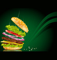 Steaming hamburger vector image