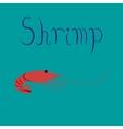 flat on background sea shrimp vector image
