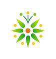 green leaf bio star logo vector image