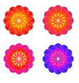 a set of buds colorful flower vector image