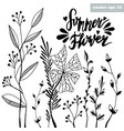 summer flower vector image