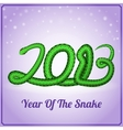 New Year card with a green snake vector image