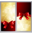 Collection of gift cards with ribbon vector image