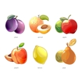 Cartoon fruits icons set vector image vector image