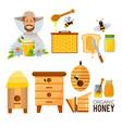 cartoon set of beekeeper beehive vector image