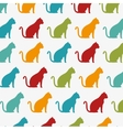 funny cats wallpaper color design graphic vector image