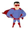 Super Hero Standing vector image