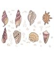 Set with sea shells vector image