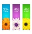 Spring flowers composition vector image