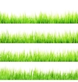 Fresh spring green grass isolated EPS 10 vector image vector image