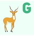 Alphabet letter G gazelle children vector image