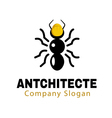 Antchitecte Design vector image