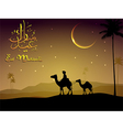 Camel walks through the desert in evening vector image