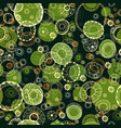 floral ornate pattern with round elements vector image