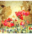 original watercolor poppy flower in gold backgroun vector image