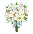 bouquet bunch of lily flowers tied with ribbon vector image