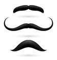 A set of three moustache vector image vector image