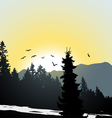 Mountain view Flying birds vector image