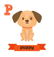 Puppy P letter Cute children animal alphabet in vector image