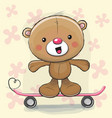 cute bear with skateboard vector image