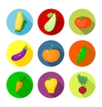 set round icons with vegetables vector image