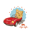 tiger style Tshirt design vector image vector image