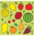 fruit set colorful vector image