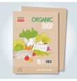 Organic shop template vector image