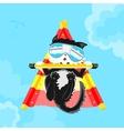 Cat pilot vector image
