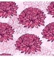 chrysanthemums vector image