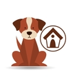 veterinary dog care house dog icon vector image