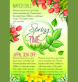 spring holiday sale floral poster vector image