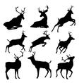 Set of deers silhouette vector image