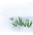 grass snow vector image vector image