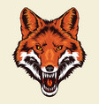 angry fox head vector image vector image