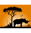 dawn in africa vector image