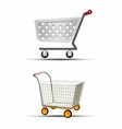 Two Shopping Trolley or Sho vector image