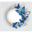 Round Banner with Blue Butterflies Morpho vector image