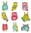 Various Owl Doodle Collection vector image vector image