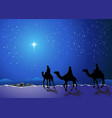 Three wise men go for the star of Bethlehem vector image
