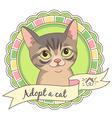 cartoon adopt cat vector image
