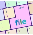 file button on computer pc keyboard key vector image