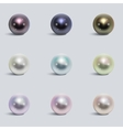 Realistic varicoloured pearls set vector image