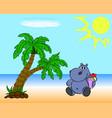 hippopotamus on the beach vector image